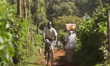 From farming to films: how the web is changing Africa